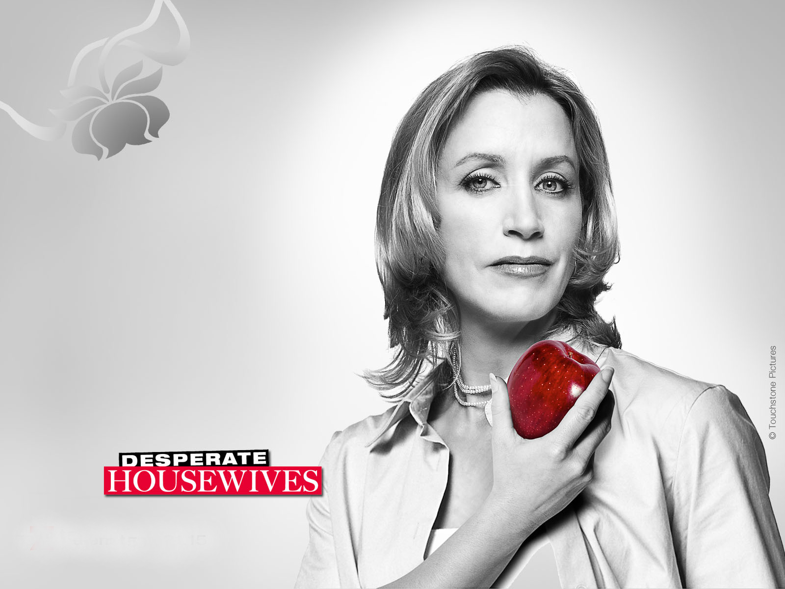 Desperate Housewives wallpaper AceShowbiz