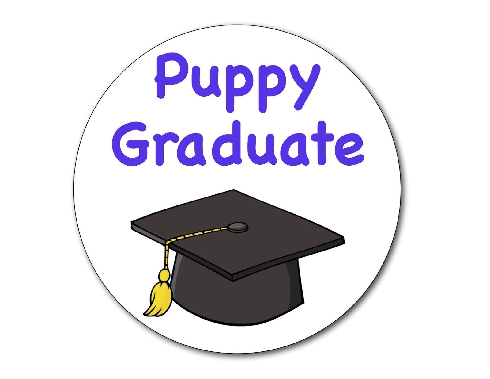 Lucy - Puppy Class Graduate