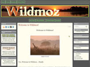 Wildmoz Subscribe