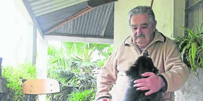 Presidente de Uruguay - José Mújica
