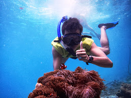 Finding Nemo at the Nemo Nest (Weh Island, Aceh Province)
