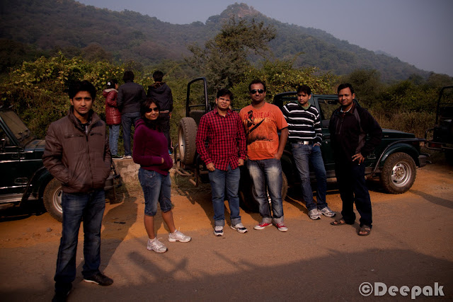 On the first day of the Sariska trip, we enjoyed the palace with a lots of activities. However, a morning safari was already scheduled @700 Hrs next day. We had already listened to the story of Anindya and Chhaya who shared their experience of Jim Corbett where they saw the Tiger. So there were a lot of hopes of spotting a tiger.Some of us were terrified too when we listened to Chhaya about her experience. :)We were all ready at the scheduled time and boarded on the safari. It was very cold outside. So we all loaded ourselves with jackets and pull overs (whatever we could find). Folks who carried camera, were setting up and getting ready. :)We hired three safari jeeps. The right most of 'em was the most experienced one with more than 8 yrs of experience working in Sariska, Ranthambore, Jim Corbett etc.During safari, there were few who were regretting coming out in that much cold weather. They were surely missing their cozy beds back at the palace. However, they made themselves comfortable at the back seat of jeep.I realized that how difficult it is to get a clear shot of animals in wild life. Courtesy to them as they chose to pose for us. We started (and ended too) with the most common and easy to spot animals i.e. deers. A sambar deer looked at us while we were shooting.This is the only clear click I could get of spotted deer. There were many of 'em but not as courteous as other animals to pose for us. :)There were plenty of peacocks too. We stopped many times during the safari to listen to the signals and callings of the animals. Our driver also shared his experience of spotting tigers during the safari. He told us that there are only 4 tigers in the reserve. But after few days 15 more tigers were about to be brought here from Ranthambore.After peacocks and deers what next you would spot in any park is monkeys obviously. :)They were enjoying on the trees. Probably there were used to of seeing strangers. Here is a monkey caught in action. :)Sun was rising and we were enjoying the chilled air in the morning. It was a real nice experience of safari in such a fresh and cold weather.Here is a majestic appearance of Nilgai. While I was shooting, driver told us about the degree of strength it poses. We forced the driver to drive faster when we came to the knowledge. :)While searching for any sign of tiger, we found foot marks of Hyena. Our driver shared the facts about how Hyena are very powerful and they come out in night.This is a very famous bird. Let me see how many of you can guess the name of this bird. (... Yeah! you are right...I dont remember the name of this bird... ;))....but I think it is Robin bird.There were a lot of Tree Pie birds flying around.A more closer look at sambar deer. It was looking right at me while I clicked.The deers were easy to spot in the forest. They could be found crossing the roads or passing by the road side.We all were enjoying the safari ride. Puneet and I was standing on the jeep and were feeling the cold air and enjoying the jerky rides.Finally we reached at the end of the route-2 of the park with no sign of tiger. :)We took some time to stretch and roamed here and there at that point.Prashant in a joyous mood as he is getting clicked. We both were chasing a parrot but couldn't get a clear shot.We couldn't see the tiger but we were not fully disappointed. Probably it was the freshness of the air and the weather that we rarely get at our workplaces.Ananya was happy as she found a bird feather while she was in search for another. :) While our way back to palace, we also spotted Grey Partridge (titar) which reminded me of many titar-bater sayings in hindi. :)We spotted many birds which we couldn't recognize. However, our driver who was a experienced one kept introducing us.Finally, we were back at the palace. We all were hungry and tired due to more than 2.5 Hrs of safari ride.We reached the palace at around 10.30 AM. We had our breakfast and left the palace for going back home. It was really a nice safari experience in Sariska with the team.