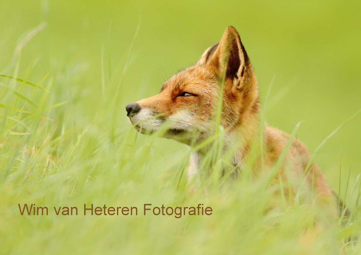 Wim van Heteren Fotografie