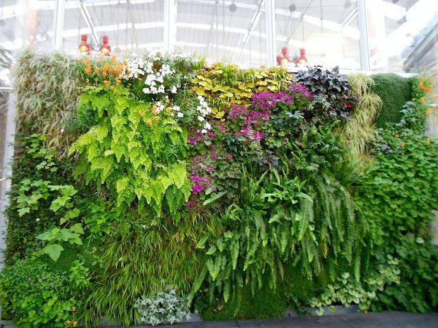 plantas jardim vertical meia sombra : plantas jardim vertical meia sombra:Jardim vertical – uma maravilha de biodiversidade