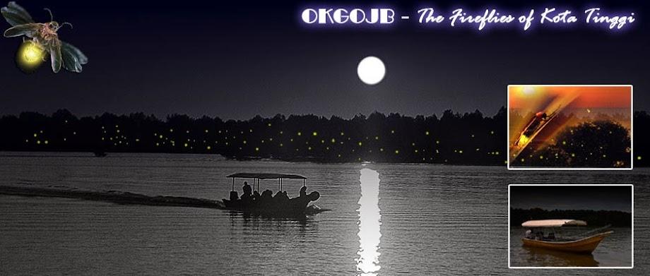 【新山行 NIGHT TOUR】KOTA TINGGI 朴素自然的绿色河岸~住着满满的发光小精灵~让人感动的萤火虫夜之旅