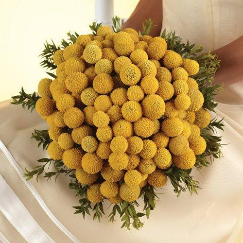 Best Flowers for Fall Weddings Source Best Flowers for Fall Weddings