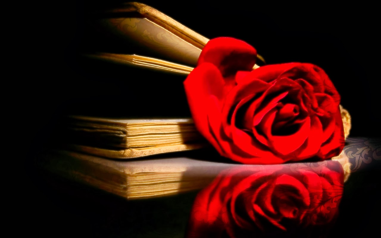 Rose-as-bookmark-with-book-black-bg-HD-wallpaper-for-desktop.jpg