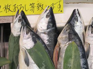 Sapporo Central Fish Market, Hokkaido
