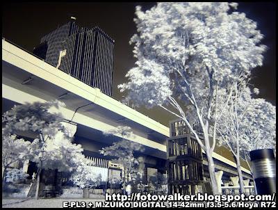 觀塘海濱花園@紅外線攝影