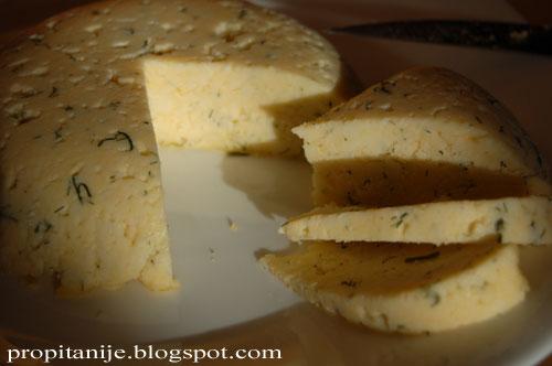 Сыр из пектина в домашних условиях 540