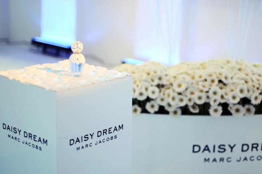 daisy7.JPG