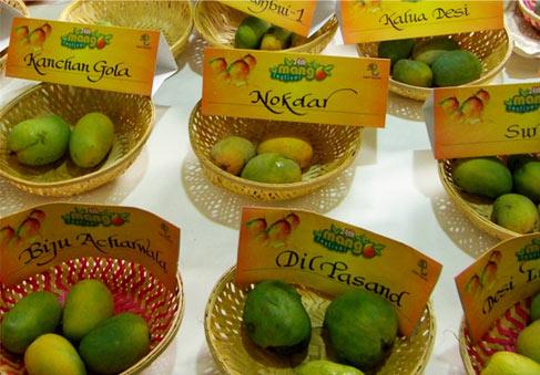 International Mango Festival at Dilli Haat Pitampura