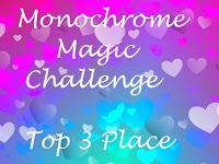 4 x Monochrome Magic Top 3
