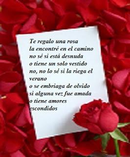 me encontre una rosa