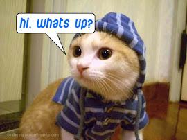 Hi,Whats up ???