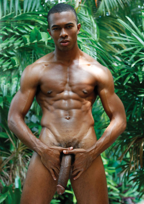 Black Male Porn Stars With Big Cocks