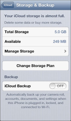 Storage and Backup screen on the iPhone