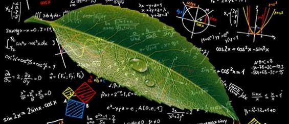 Ramas de la biologa  Biologa