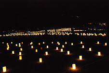 Lantern Festival in Nara (2)