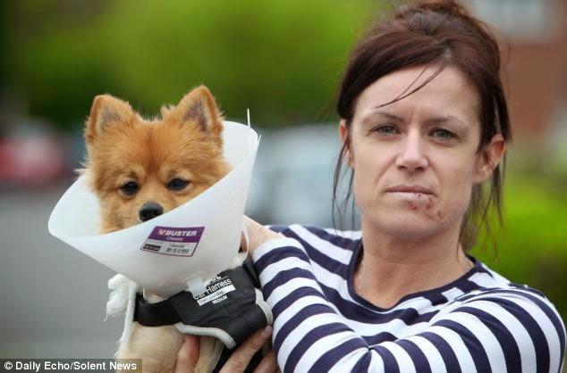 Mujer Quedo Pegada Por Un Perro