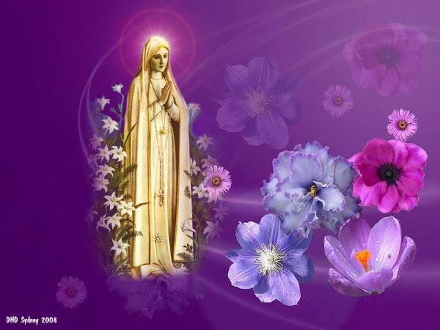 Ave Maria Vầng Trăng Từ Bi