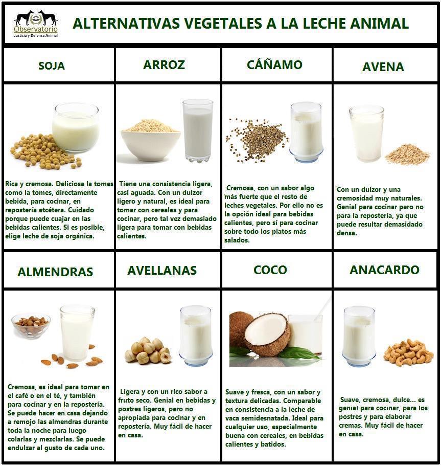 http://comerveganoconcloilet.blogspot.com.es/