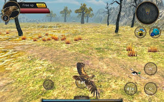 Screenshots of the Eagle bird simulator for Android tablet, phone.