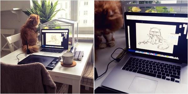 Macbook and cat