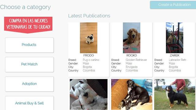 animalmatch-red-social-donde-los-animales-son-prioridad