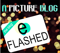 eFlashed: A Picture Blog