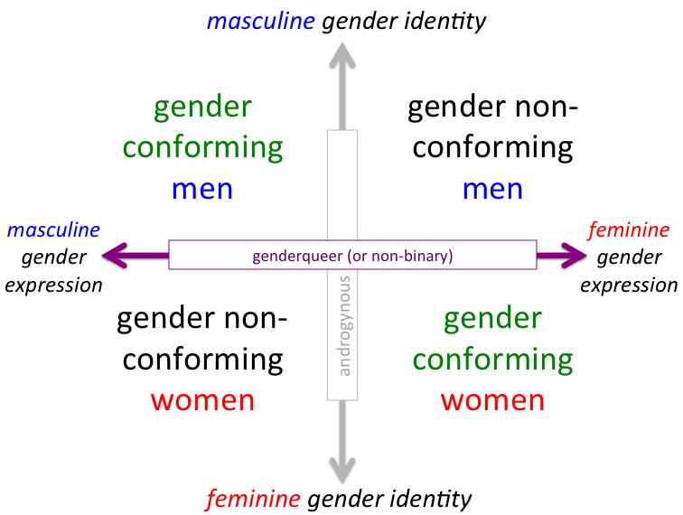 gender identity without gender prescriptions essay