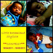 Little Dreamland Stylista Contest