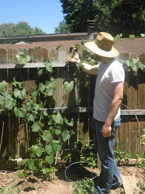 The owner of the Dow Dominion posing with his 3-year-old grape vine