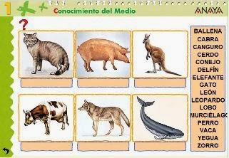 http://www.ceipjuanherreraalcausa.es/Recursosdidacticos/PRIMERO/datos/03_cmedio/03_Recursos/actividades/2losAnimales/act5.htm