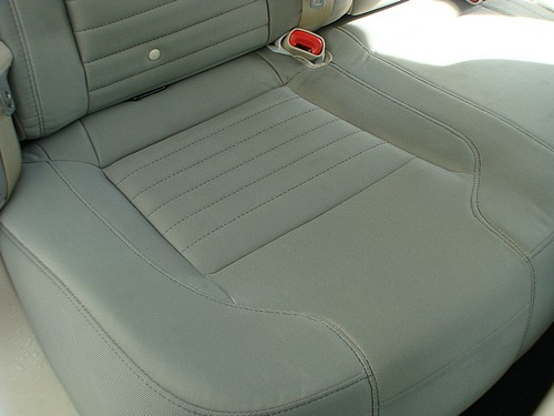 We Have Trained Professionals On Staff Who Are Competent To Remove Bio Hazards And The Resulting Odor From Your Car