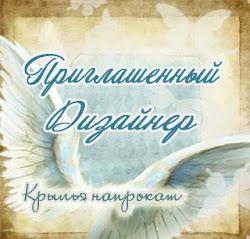 Моя работа в качестве ПД)))