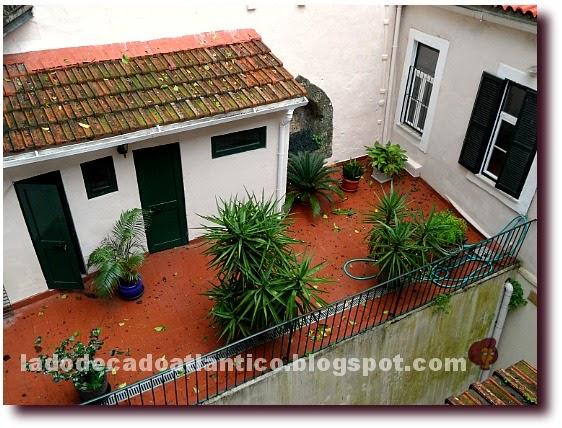 Imagem de um quintal de chão cerâmico, com várias plantas em vaso, uma arrecadação, Lisboa