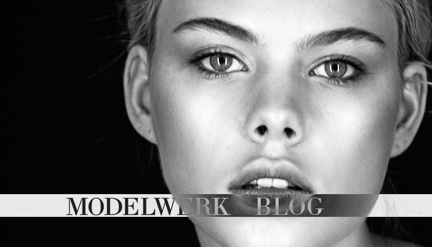MODELWERK BLOG