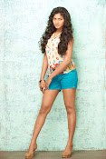 Shruti reddy sizzling photos gallery-thumbnail-1