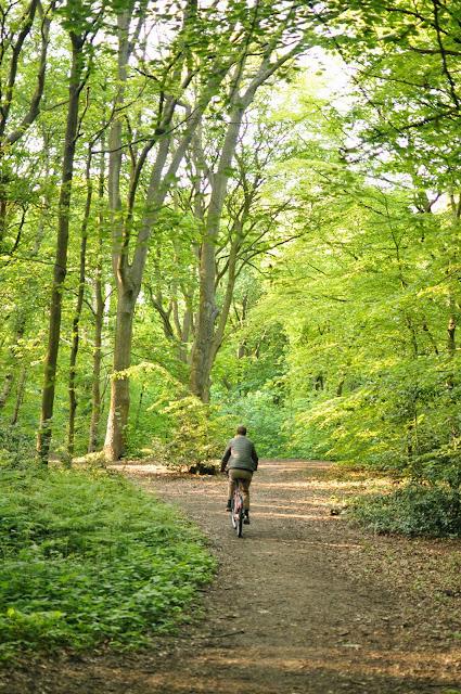 Hampstead Heath bike riding