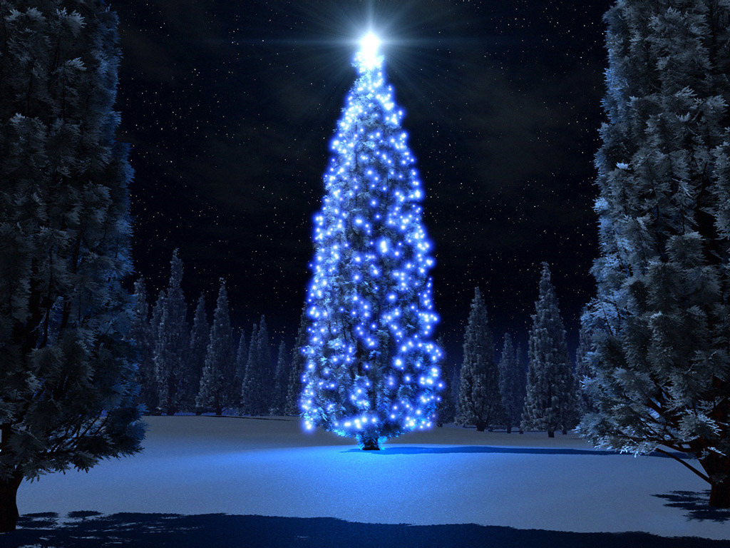 Christmass Tree wallpapers
