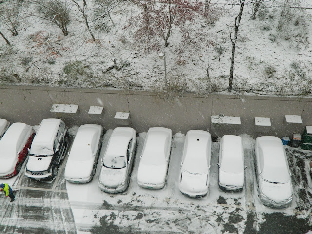Snowed cars in Seoul