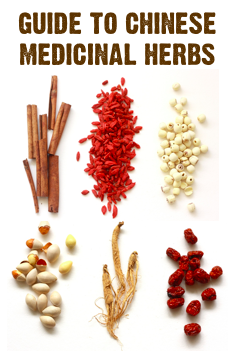 guide to chinese medicinal herbs
