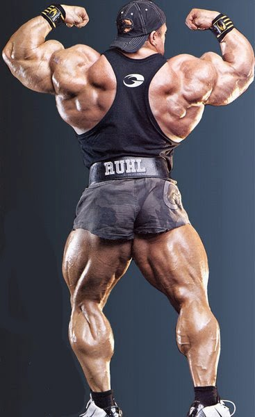 Markus r 252 hl online gym