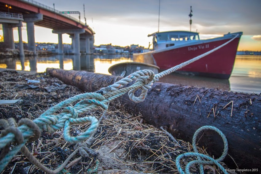 Portland and South Portland, Maine USA April 2015 Boat tied up with knotted rope at beach photo by Corey Templeton.