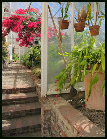 view from grape house through to Orchid House