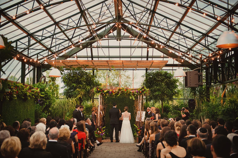Anna goldman wedding