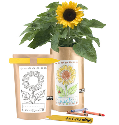 garden in a bag - sunflower