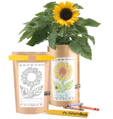 garden in a bag - sunflower
