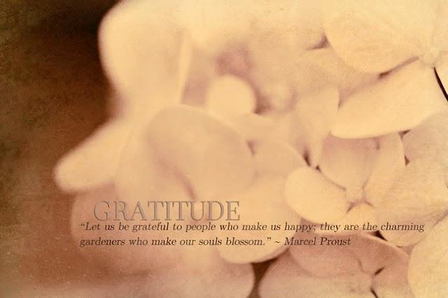 http://3.bp.blogspot.com/-iVLrimPq4SY/U9vAXQRT-FI/AAAAAAAAJRY/q9Bf_kL1E3I/s640/Gratitude+(Hydrangea).jpg
